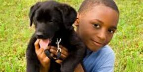 child with dog