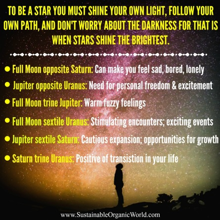 star-calender