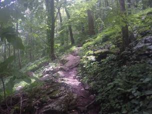 1climbing up