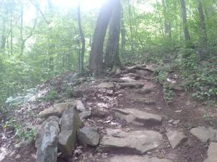2climbing up
