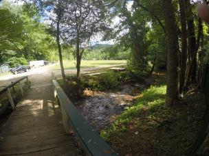 stream running next to farm animals